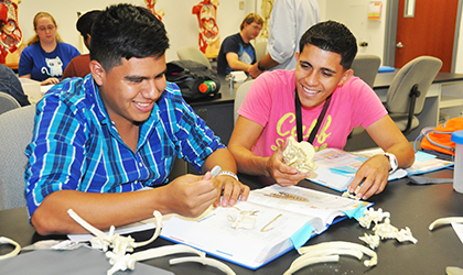 Two male students identifying bones in the anatomy lab