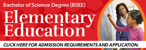 BSEE Website Banner